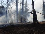 Požár lesa Staré Splavy
