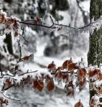 Lednová mrazivá inverze nad Maršovicemi