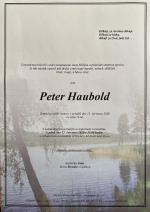Petr Haubold parte