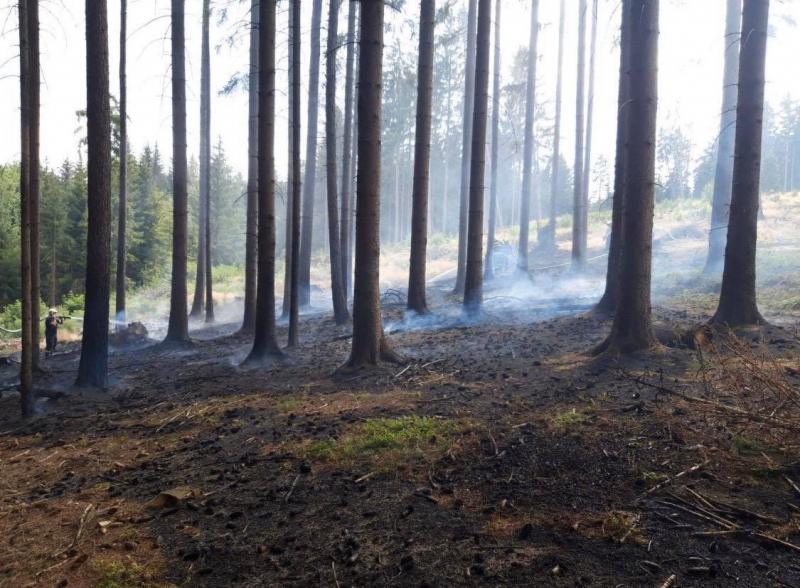Požár lesní hrabanky v Jirkově