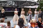 Výstava Křehká krása 2020