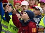 Oslavy Mezinárodního dne rodiny v Jablonci nad Nisou