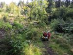 Jablonec spolupracuje s dobrovolníky při péči o městské lesy