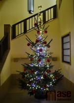 Rozsvícení vánočního stromu v Jablonci nad Nisou 2020