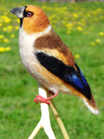 V Šimonovicích vznikají modely ptáků z ovčího rouna. Jsou jako živí