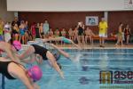 Činnost tanvaldské sportovky