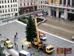V centru Jablonce už mají vánoční smrk