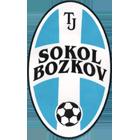 Logo Sokol Bozkov
